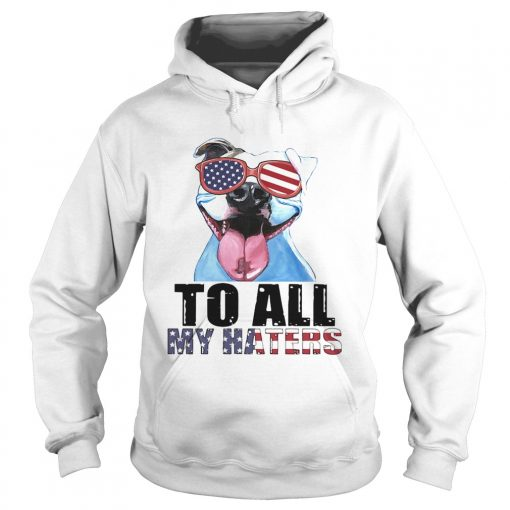 To all my haters pitbull American flag veteran Independence Day  Hoodie