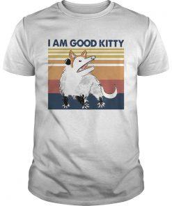 Opossum I Am Good Kitty Vintage  Unisex