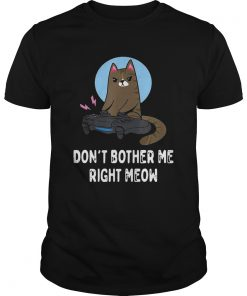 Cat Gamer Dont Bother Me Right Meow  Unisex
