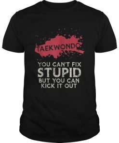Taekwondo you cant fix stupid but you can kick it out  Unisex