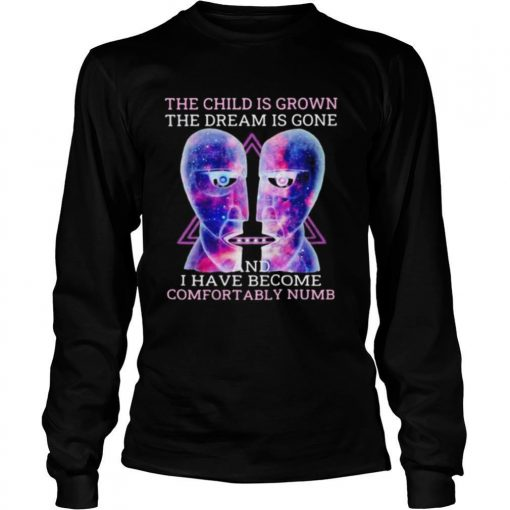 Pink floyd band the child is grown the dream is gone and i have become comfortably numb shirt